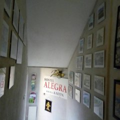 Alegra Hostel интерьер отеля фото 2