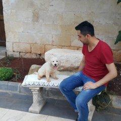 Отель Ali Bey Konagi с домашними животными