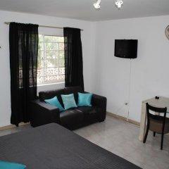 Отель The Lodge Bonaire 3* Стандартный номер с различными типами кроватей фото 7