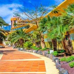 Отель SBH Club Paraíso Playa - All Inclusive 4* Стандартный номер разные типы кроватей фото 2