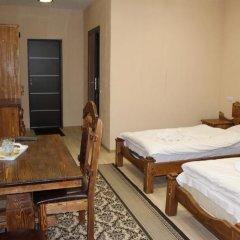Гостиница Горянин Номер Делюкс с различными типами кроватей фото 5