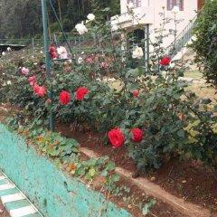 Tea Bush Hotel - Nuwara Eliya фото 5