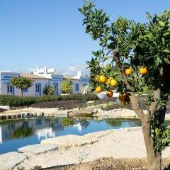 Отель Casa Flor de Sal бассейн фото 3