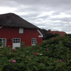 Отель Søndervig Camping & Cottages фото 3