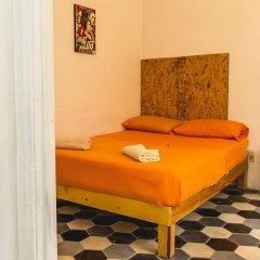 Blue Pepper Hostel Chapultepec Стандартный номер фото 2