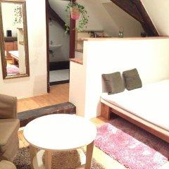 Апартаменты Metropolis Prague Apartments-zlaty Dvur Прага комната для гостей фото 4