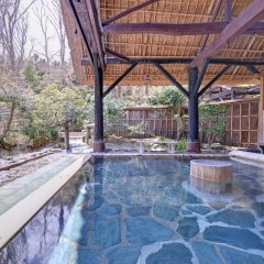 Отель Sachinoyu Onsen Насусиобара бассейн фото 3