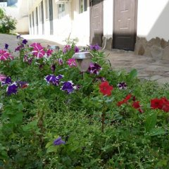 Гостиница Аркадис фото 5