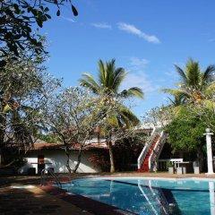 Отель Ypsylon Tourist Resort Шри-Ланка, Берувела - отзывы, цены и фото номеров - забронировать отель Ypsylon Tourist Resort онлайн бассейн фото 3