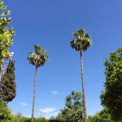 Отель Chems Марокко, Марракеш - отзывы, цены и фото номеров - забронировать отель Chems онлайн фото 6