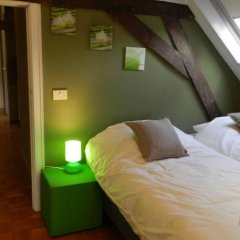 Апартаменты Apartment Het Blekershuys комната для гостей фото 4