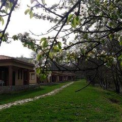 Отель Perpershka River Villas Болгария, Ардино - отзывы, цены и фото номеров - забронировать отель Perpershka River Villas онлайн