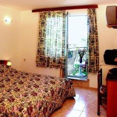 Family Hotel Orfei удобства в номере