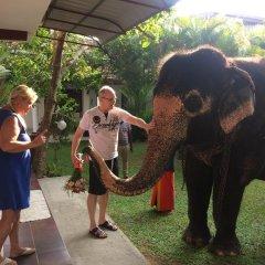 Отель White Bridge House & Resort Шри-Ланка, Берувела - отзывы, цены и фото номеров - забронировать отель White Bridge House & Resort онлайн фото 6