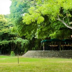 Отель Malwathu Oya Caravan Park фото 12