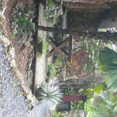 Отель Colibri Hill Resort Гондурас, Остров Утила - отзывы, цены и фото номеров - забронировать отель Colibri Hill Resort онлайн фото 2