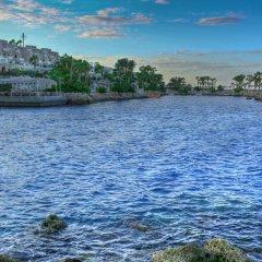 Отель Albatros Citadel Resort Египет, Хургада - 2 отзыва об отеле, цены и фото номеров - забронировать отель Albatros Citadel Resort онлайн приотельная территория фото 2