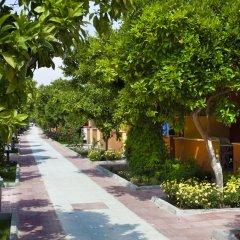 Hotel Ozlem Garden - All Inclusive фото 12