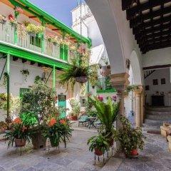 Отель Apartamentos Jerez Испания, Херес-де-ла-Фронтера - отзывы, цены и фото номеров - забронировать отель Apartamentos Jerez онлайн фото 5
