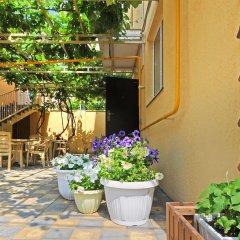 Гостиница Guest House Vinogradnaya 4 в Анапе отзывы, цены и фото номеров - забронировать гостиницу Guest House Vinogradnaya 4 онлайн Анапа фото 3