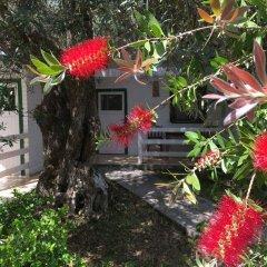 Отель Altea Beach Lodges фото 16
