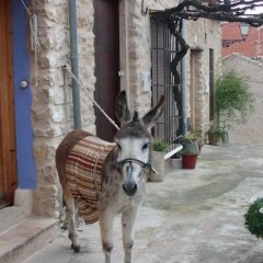 Отель Casa Rural Ca Ferminet фото 10