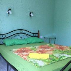 Гостиница Alpic Guest House комната для гостей фото 4