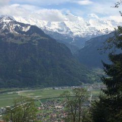 Metropole Swiss Quality Interlaken Hotel фото 5