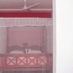 Отель Blue Eyes Inn Стандартный номер с различными типами кроватей фото 12