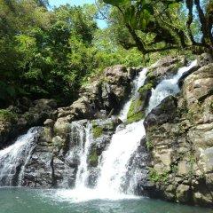 Отель Maravu Taveuni Lodge бассейн фото 3