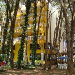 Отель Mali I Robit Голем гостиничный бар