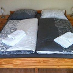 Отель Elli Чехия, Франтишкови-Лазне - отзывы, цены и фото номеров - забронировать отель Elli онлайн комната для гостей фото 4