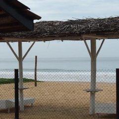 Отель Thiranagama Beach Hotel Шри-Ланка, Хиккадува - отзывы, цены и фото номеров - забронировать отель Thiranagama Beach Hotel онлайн приотельная территория