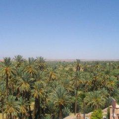 Отель Nadia Марокко, Уарзазат - отзывы, цены и фото номеров - забронировать отель Nadia онлайн балкон