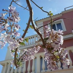 Отель Villa Marku Soanna Албания, Ксамил - отзывы, цены и фото номеров - забронировать отель Villa Marku Soanna онлайн помещение для мероприятий