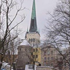 Отель Rapunzel Tower Apartment Эстония, Таллин - отзывы, цены и фото номеров - забронировать отель Rapunzel Tower Apartment онлайн фото 5