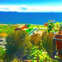 Deniz Houses Турция, Стамбул - - забронировать отель Deniz Houses, цены и фото номеров бассейн фото 2