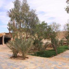 Отель Maison Adrar Merzouga Марокко, Мерзуга - отзывы, цены и фото номеров - забронировать отель Maison Adrar Merzouga онлайн