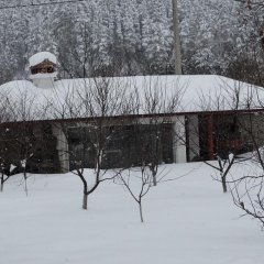 Отель Mountain Camping Rila Болгария, Рила - отзывы, цены и фото номеров - забронировать отель Mountain Camping Rila онлайн спортивное сооружение