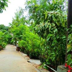 Отель The Krabi Forest Homestay 2* Стандартный номер с различными типами кроватей фото 28