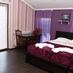 Отель Majestic Georgia 3* Полулюкс с различными типами кроватей фото 11