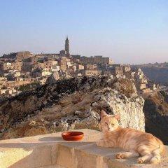 Отель Torretta Ai Sassi Матера с домашними животными
