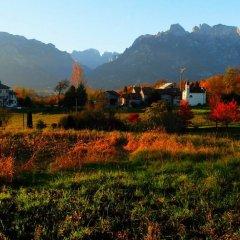 Отель B&b Col del Vin Италия, Беллуно - отзывы, цены и фото номеров - забронировать отель B&b Col del Vin онлайн приотельная территория