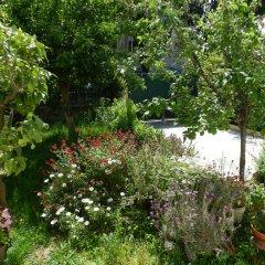 Апартаменты Studio In Villa Josephine фото 10