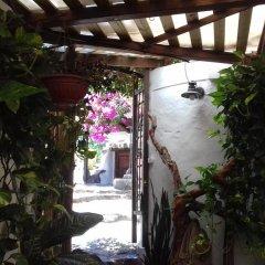 Отель La Casa del Patio фото 15