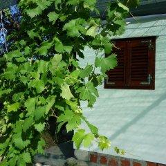 Апартаменты Nature Apartment in Split фото 7