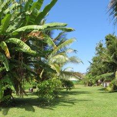 Отель Taharuu Surf Lodge Французская Полинезия, Папеэте - отзывы, цены и фото номеров - забронировать отель Taharuu Surf Lodge онлайн фото 17