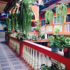 Отель Marjenny Гондурас, Копан-Руинас - отзывы, цены и фото номеров - забронировать отель Marjenny онлайн фото 9