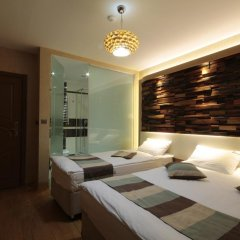Ayderoom Hotel 3* Стандартный номер с различными типами кроватей фото 3