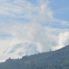 Отель Blossom Непал, Покхара - отзывы, цены и фото номеров - забронировать отель Blossom онлайн фото 3